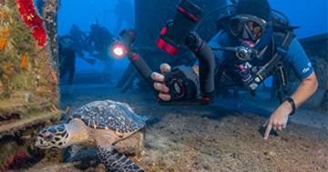 Sealife Sl740 dc2000 unter Wasser