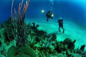 Tauchen mit Unterwasserkmaera
